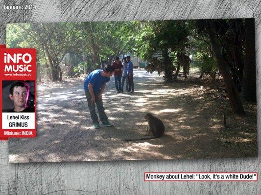 Lehel Kiss s-a întâlnit cu o maimuțică din campus