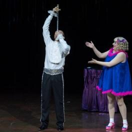 Cirque du Soleil - Varekai - București 2017