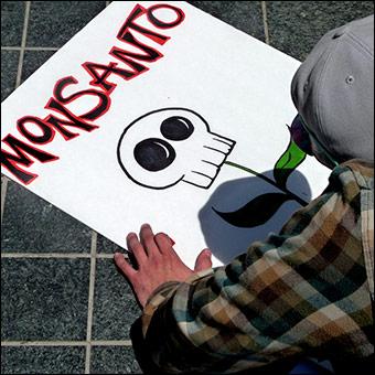 Monsanto es Conocida Mundialmente Por Su toma de control de agresivo de la Oferta Mundial de Alimentos.  Crédito: msdonnalee via Flickr