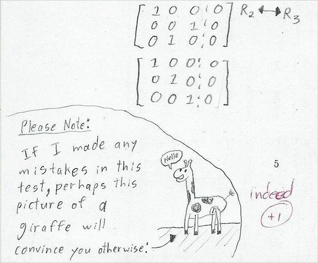 20 Test Answers From Kids That Are So Wrong They're Right