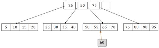 DBMS B+ Tree