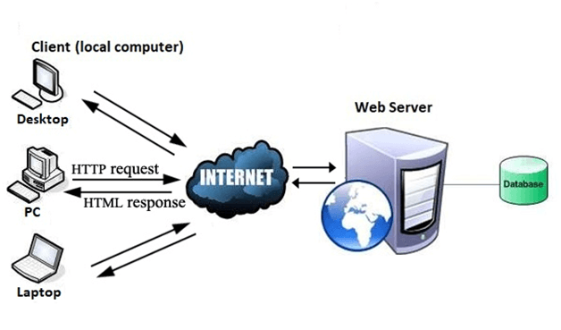 What is WWW in hindi? ,