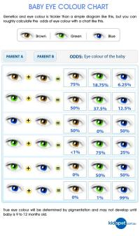 Baby's Eye Color - BabyCenter