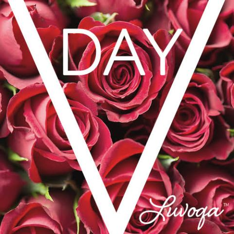 Luvoqa Valentine's Day Sale