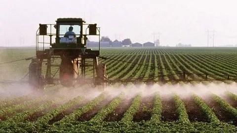 Resultado de imagen para pesticidas