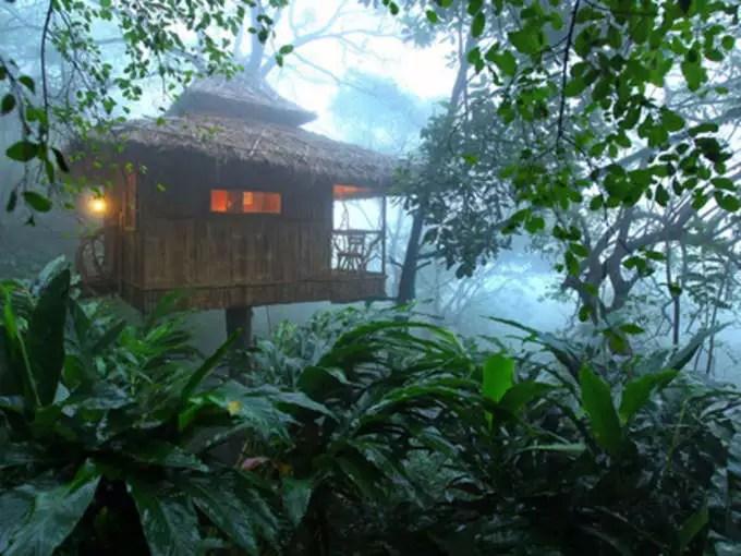 Kerala's Wayanad is a very beautiful place