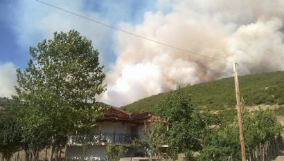 Συνεχίζεται η μάχη με τις φλόγες στα Τρίκαλα