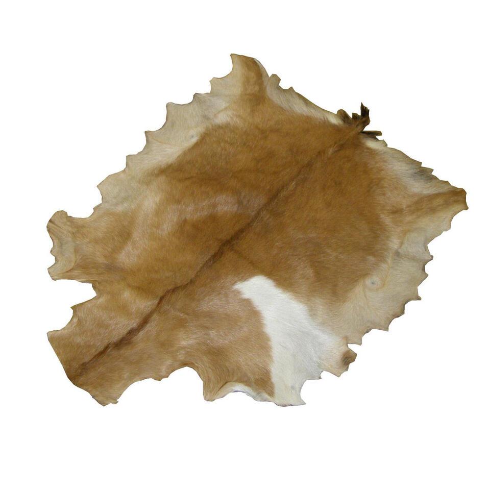 hsm collection peau de chevre naturelle
