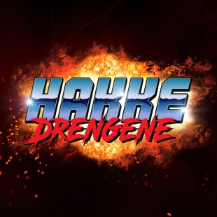 Image result for hakkedrengene