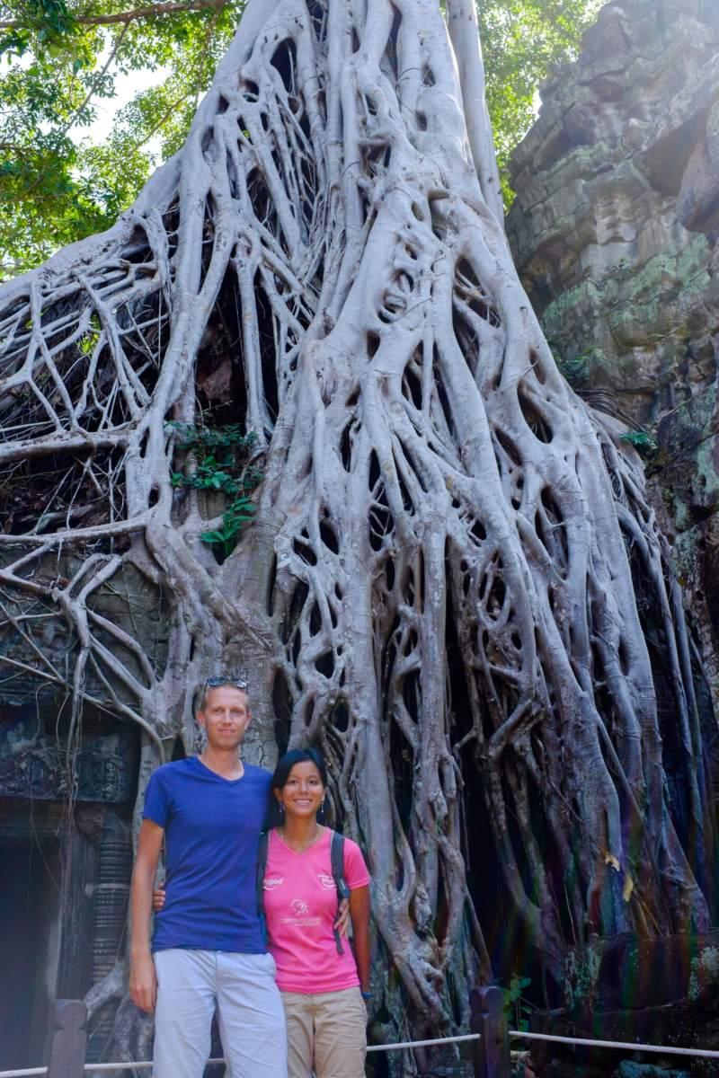 Ta Prohm Tomb Raider tree