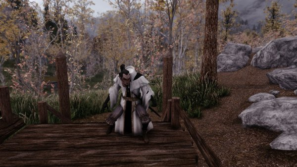 Skyrim Mods Capes With Hdt Physics Portable Backpack - Year