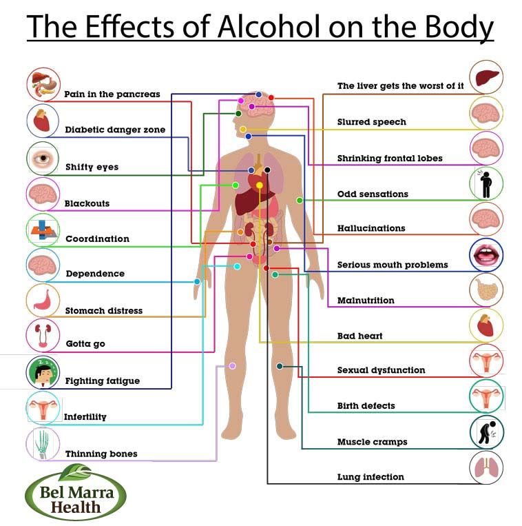 The Effects Of Alcohol On The Body By Ms Juhi Parashar