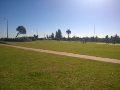 And the local park