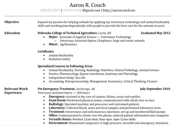 Your AllInOne Guide To Building The Perfect Resume