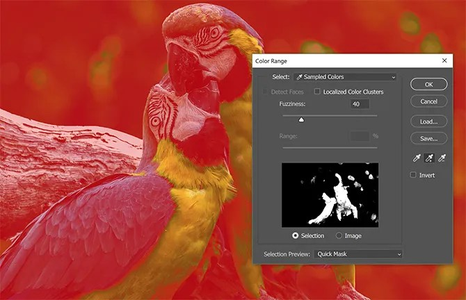 Photoshop Select Color 3 - How to Select All of the Same Color in Photoshop