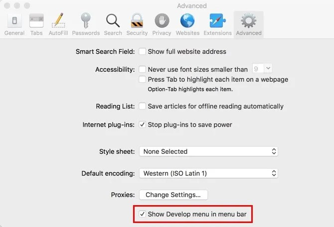 Safari Включить параметры разработчика