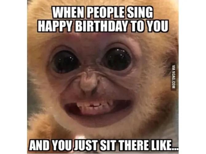 Meme Compleanno brutto scimmia