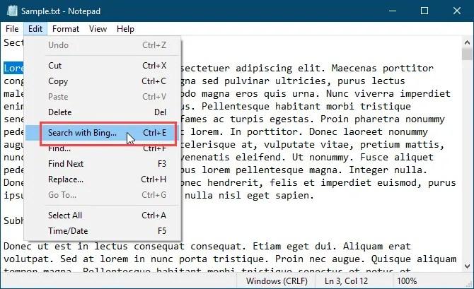 Cerca con Bing nel blocco note