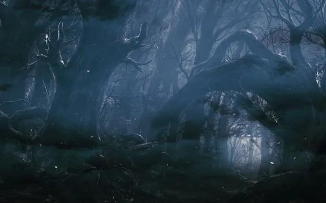 Dark Forest Wallpaper from WallHaven