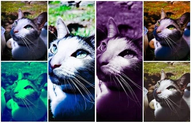 photoshop-express-filtro-esempi
