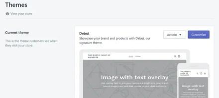 Shopify Theme Debut Example