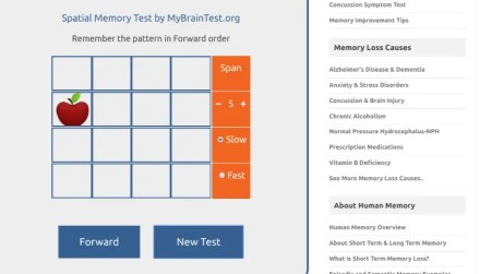 Memory Loss Test lets you check your short term memory and working memory