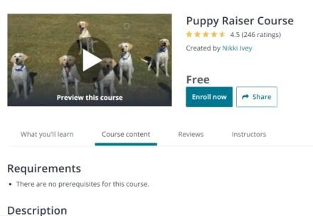 Puppy Raiser Course Free Dog Training