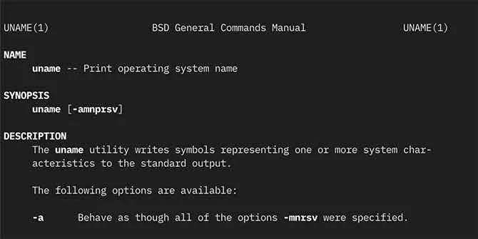 BSD command manual on macOS