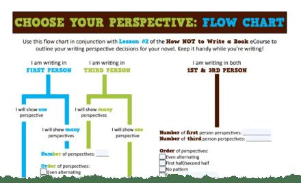 Choose your perspective flowchart