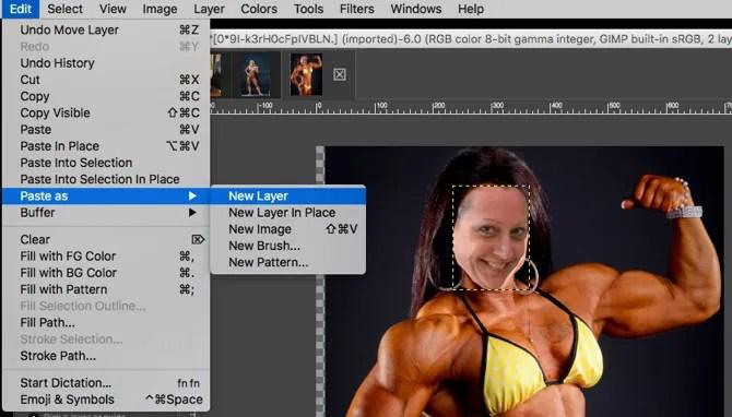 GIMP Вставить лицо как новый слой
