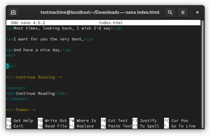 Nano Linux терминал текстовый редактор