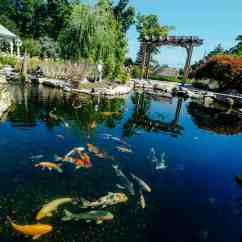 Arts And Crafts Kitchen Lighting Cabinets Com Fitzs Fish Ponds - Pond Services Nj