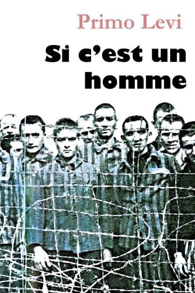 Si C Est Un Homme Primo Levi : homme, primo, Homme, Correspondance, Biographies, Mémoires