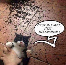 melenchon3