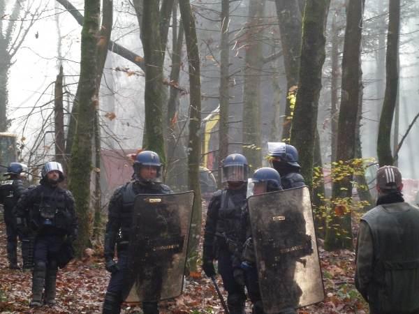 Des terroristes casqués protègent les engins de destruction dans la forêt de Rohanne