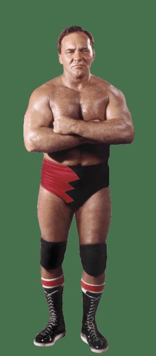 Level 8  WWE Superstars From SmackDown  Memrise