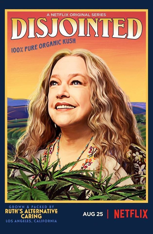 Image result for Netflix Disjointed