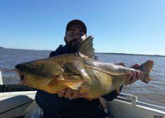 Los pescadores se divierten sacando piezas grandes en el río Paraná