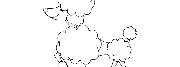 Poodle Template