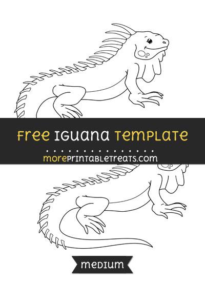 Iguana Template