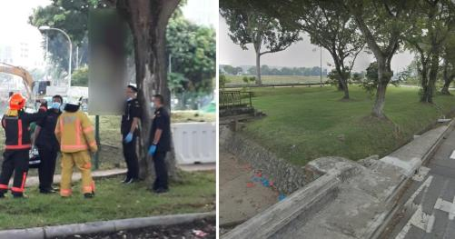 29-year-old man found hanging from tree near Tampines Road on Oct. 30, 2019 - Mothership.SG - News from Singapore, Asia and around the world
