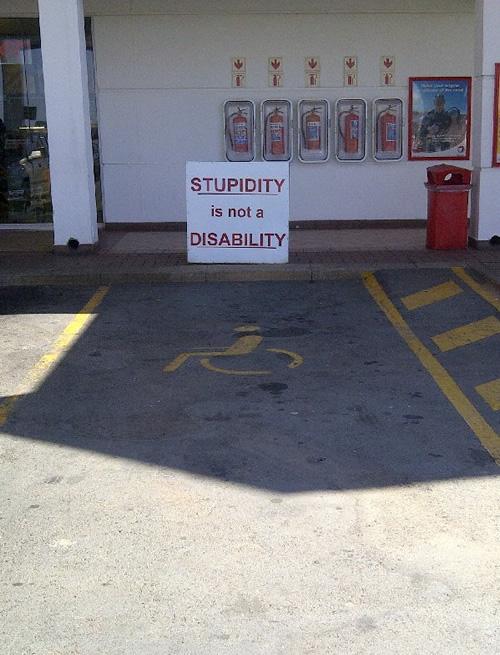 Stupidity Is Not A Disability  Neatorama