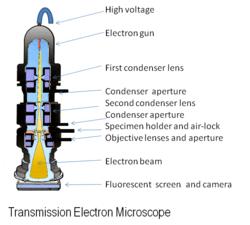 basic gun diagram car battery alternator wiring electron microscope - new world encyclopedia