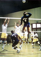 Volleyball  New World Encyclopedia