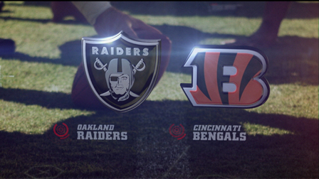 Image result for raiders vs bengals