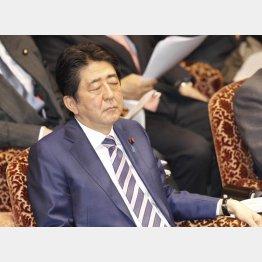国民をナメ切っている(C)日刊ゲンダイ