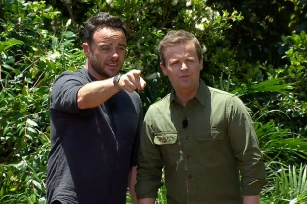 I'm A Celebrity: Ant and Dec tried to calm down Jordan Banjo in the latest Bushtucker Trial