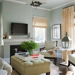 Paint For The Living Room Ideas Cabinet Design Color Schemes Scheme Metallic Neutrals
