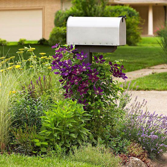 front yard mailbox gardens