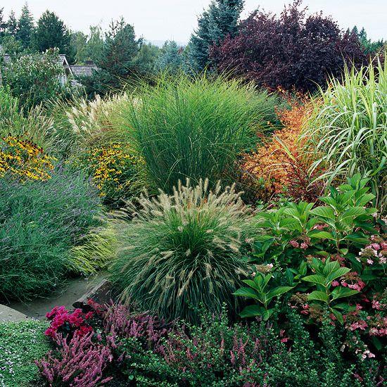 ways ornamental grasses